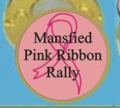 Pink Ribbon Hat Clips
